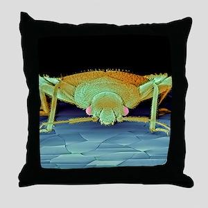 Bed bug, SEM Throw Pillow