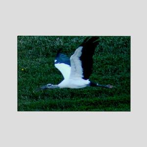 Wood Stork in flight Rectangle Magnet