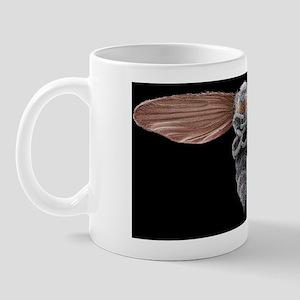 Biting midge, SEM Mug