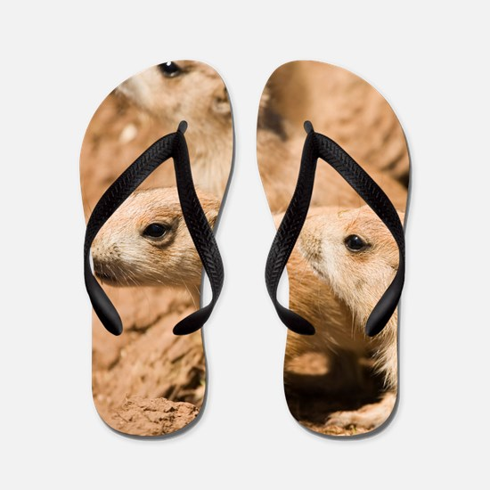 Black-tailed prairie dogs Flip Flops