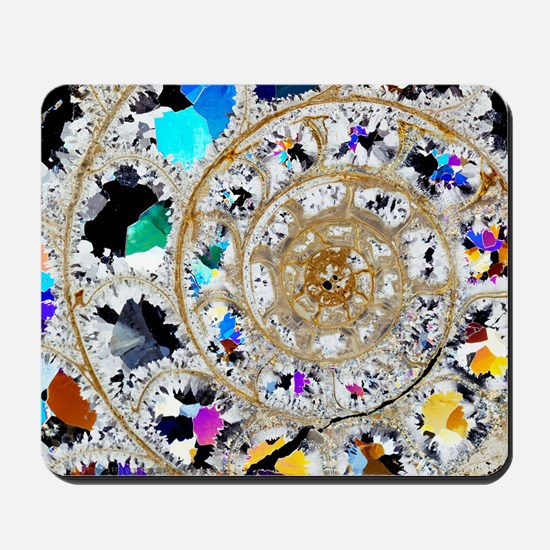 Ammonite fossil, thin section Mousepad
