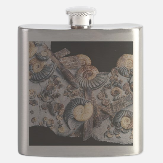 Ammonites Flask