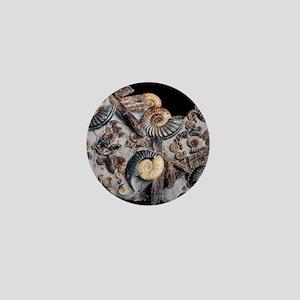 Ammonites Mini Button
