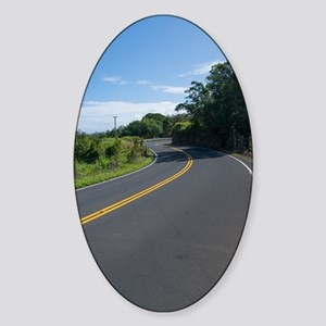 16x10 Hawaii Road to Hana Sticker (Oval)