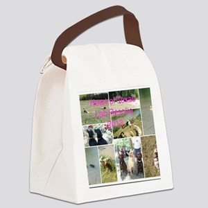 Land cover1 Canvas Lunch Bag