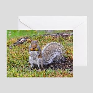 11x17_print Greeting Card