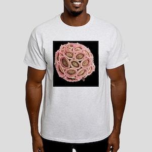 Calcareous phytoplankton, SEM Light T-Shirt