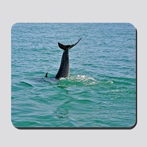 Bottlenose Dolphin Diving - 2 Mousepad