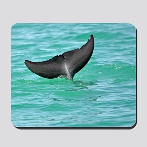 Bottlenose Dolphin Fluke Mousepad