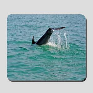 Bottlenose Dolphin Diving Mousepad