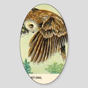 1978 United States Saw whet Owl Pos Sticker (Oval)