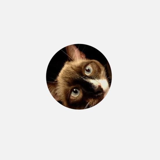 A Siamese Cat Mini Button