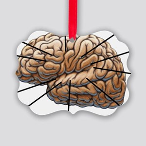 Atlas of a Plumbers Brain Picture Ornament