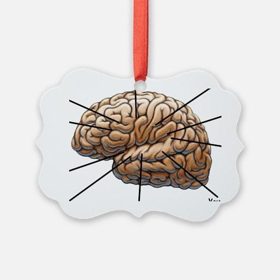 Atlas of a Plumbers Brain Ornament