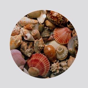 Collection of sea shells Round Ornament