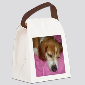Dog Nap! Canvas Lunch Bag