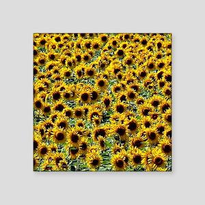 "Sunflower Power Square Sticker 3"" x 3"""
