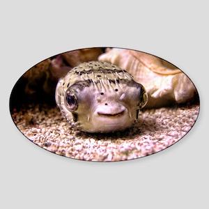Blowfish Sticker (Oval)