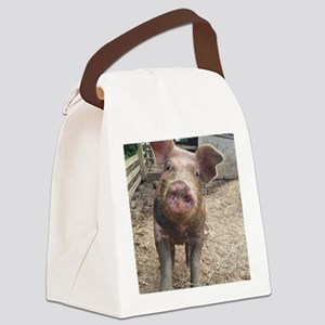 Funny Muddy Red Pig Canvas Lunch Bag