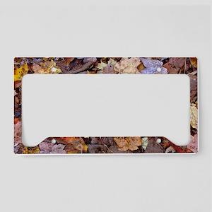 forest floor 301 License Plate Holder