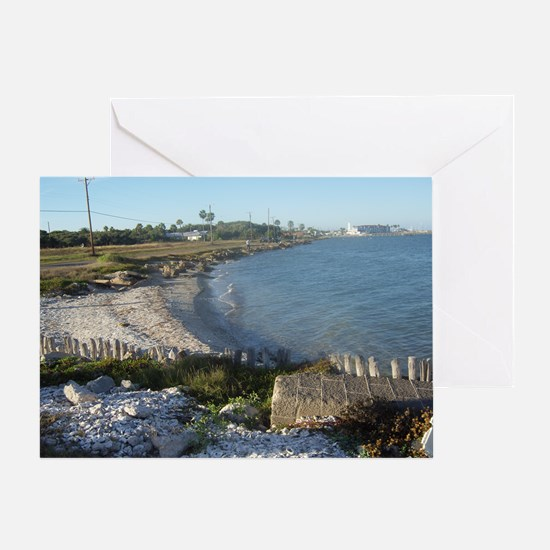 Seashells, the Ocean and The Beach Greeting Card