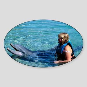 Dolphin education Sticker (Oval)
