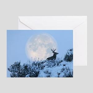 Mule deer moon Greeting Card