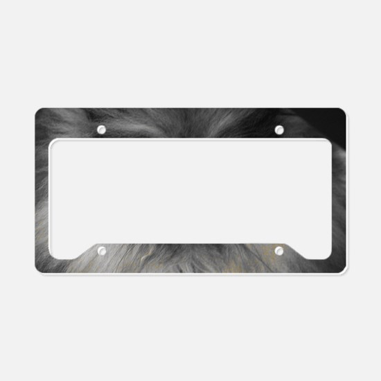 Yellow Eyes License Plate Holder