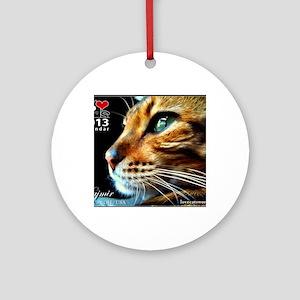 Cover Bengal Cat Close up Round Ornament