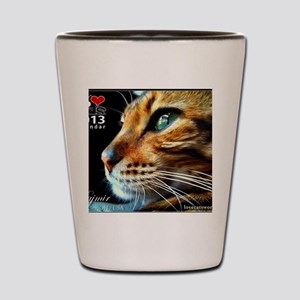 Cover Bengal Cat Close up Shot Glass