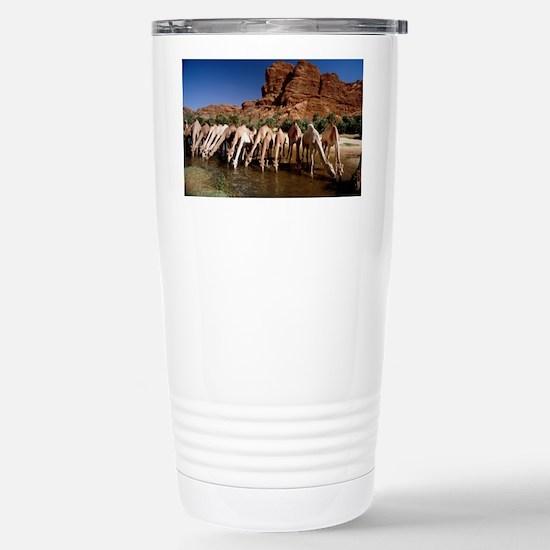 Dromedary camels drinki Stainless Steel Travel Mug