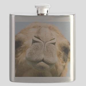 Dromedary camel Flask