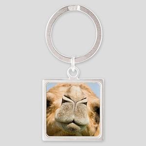 Dromedary camel Square Keychain