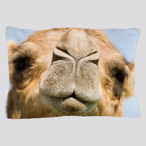 Dromedary camel Pillow Case