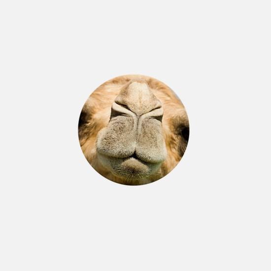 Dromedary camel Mini Button