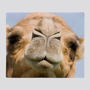 Dromedary camel Throw Blanket