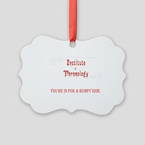 Phrenology a bumpy ride Picture Ornament