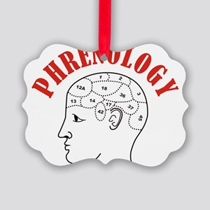 Phrenology head chart Picture Ornament