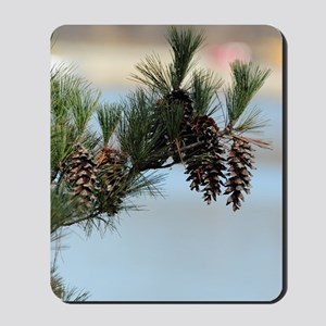 ipadMini_PineCones_2 Mousepad