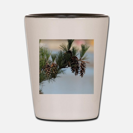 ipadMini_PineCones_2 Shot Glass