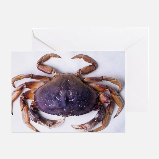Dungeness crab Greeting Card