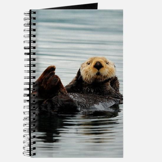 ipadMini_Otter_8 Journal
