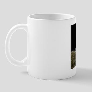 s3800044 Mug