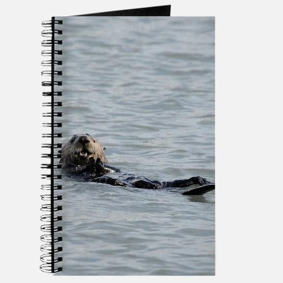 ipadMini_Otter_6 Journal