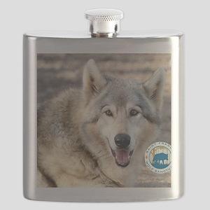 00cover-SFWS-yoda Flask