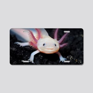 Axolotl Aluminum License Plate