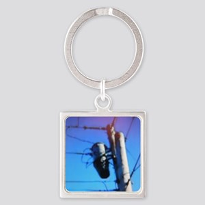 Beehive On Transformer Square Keychain