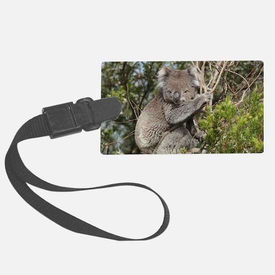 koala12 Luggage Tag