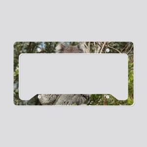 koala12 License Plate Holder