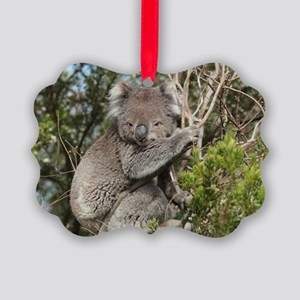 koala12 Picture Ornament
